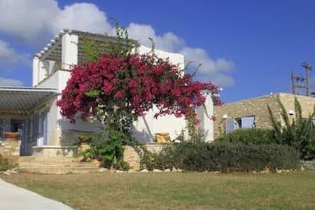 Alexandra Cozy Summer Villa in Paros/ Naoussa - Villa