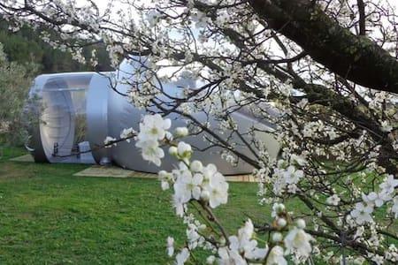 Les chambres bulle du château belvize - Jiné