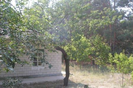 pronájem domu v přírodě - House