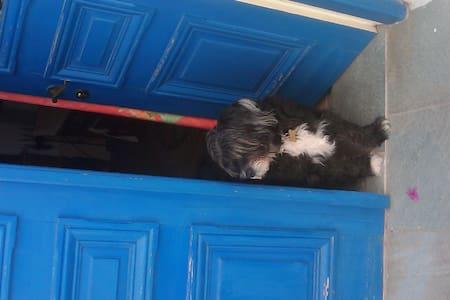 Σπιτι στην Μαρπησσα - Marpissa - Appartement