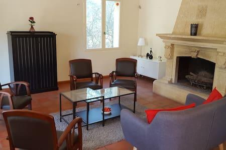 Provence, Oliviers, Grande villa, Piscine de 15x4 - Villa