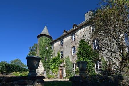 Château de Taussac - Castillo