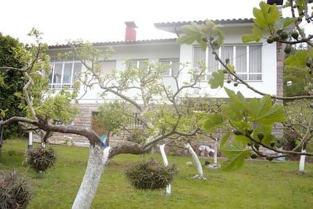 Chalet en Vidiago (Llanes), con jardín individual. - Vidiago - Chalet