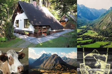 Authentic Property in Great Mountain Scenery - Almhütte