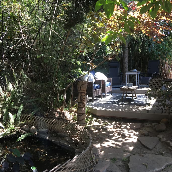 Private patio surrounded by black bamboo