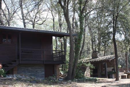 Casa de fusta per amants natura - Cabin