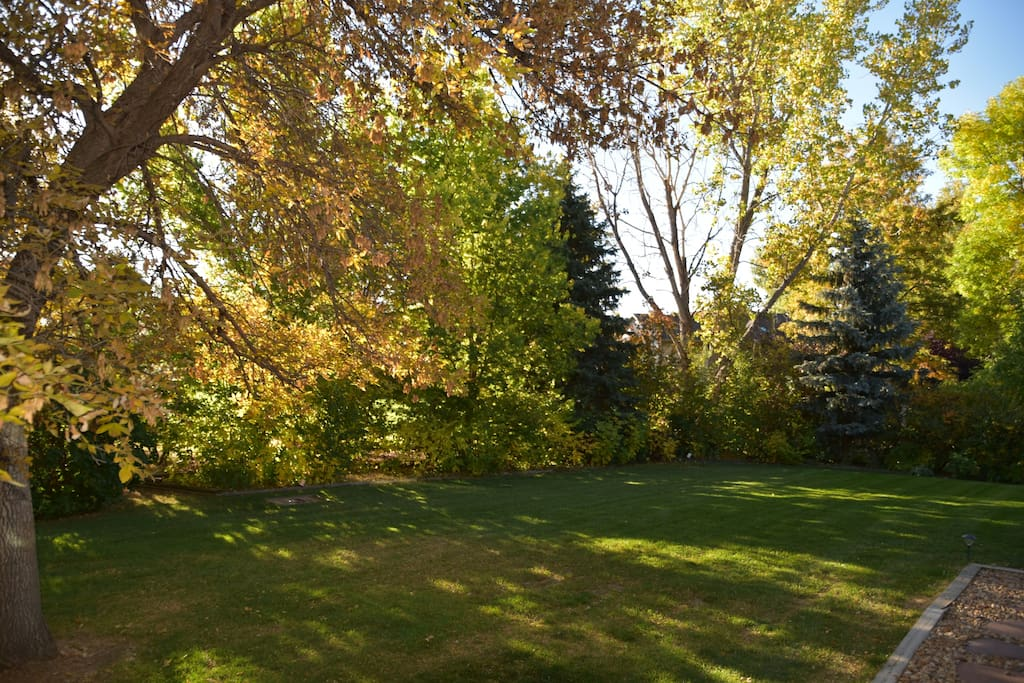 HUGE BACK YARD IN THE FALL, ALL YOUR TO ENJOY