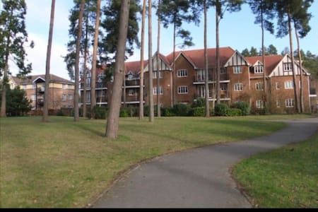 Spacious apartment perfect for Farnborough Airshow - Fleet - Appartement