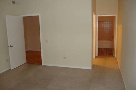 Affordable 2 Bedroom Near Soldier Field! - Chicago - Condominium