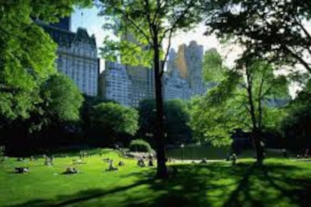 West Side Central Park Area Apartments For Rent In New York