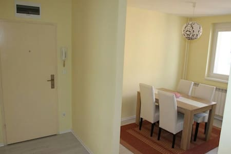 Comfortable apartment in Sarajevo - Wohnung