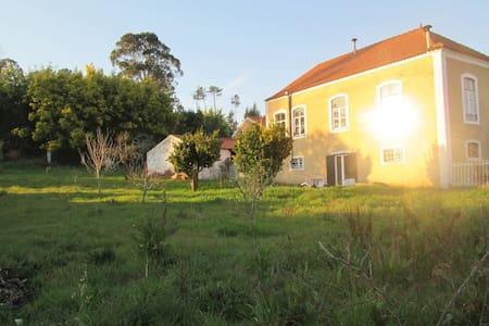 Casa de Campo Centenária com Pomar - Chalet