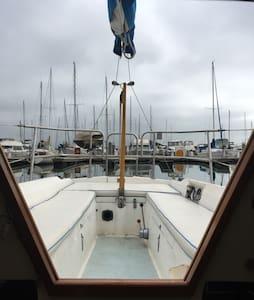 Treasure Island in a sailboat - San Francisco - Bateau