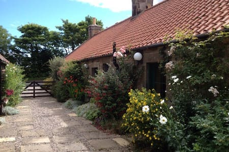 Falside Smiddy apartment - Saint Andrews - Bed & Breakfast