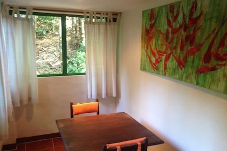Studio La Heliconia, Playa Tortuga, Osa - Villa