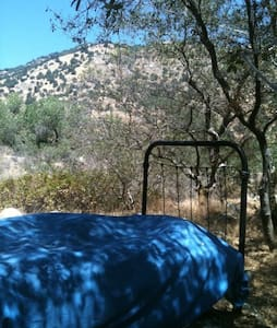 Outdoor Living - Camp Sites - Springville - Other