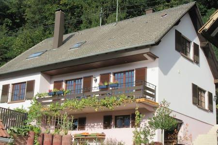 Grande chambre  28 m2 avec séjour et sdb +wc privé - Wissembourg - House