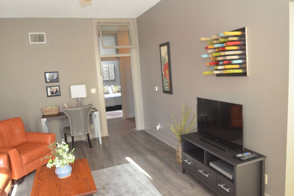 Colorful furnishings & flat screen television