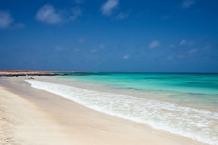 Delizioso monolocale a soli 200 mt dalla spiaggia! - Santa Maria - Apartment