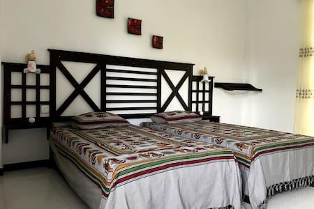 SLH apartment ( Twin Room No. 1 ) - Balapitiya