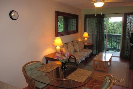 Cozy and vibrant, minutes to beaches and to Hilo. - Hilo - Wohnung