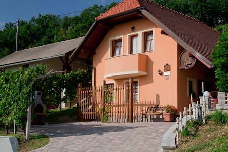 Vineyard cottage Tramte - House