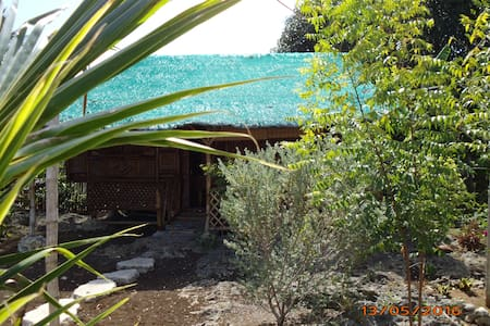 """Bamboo House 2"" Room 1"" - Moalboal - Appartamento"