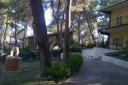 Casa vacanza e relax tra il mare e la pineta - House