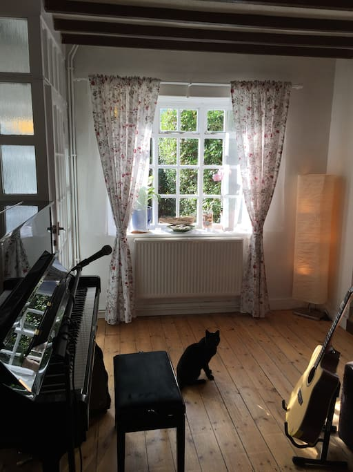 Living room with piano and Frankie