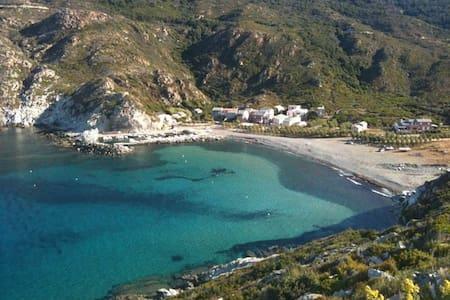 Villa de bord de mer - Huvila