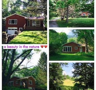 A Beauty in nature near Woodstock! - House