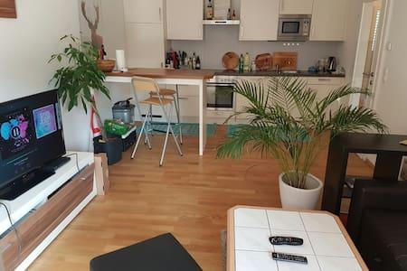 Beautiful Room in New Apartment - Apartment