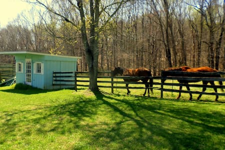 Belle Terre Farm's Barn Stalls - Mocksville - Cottage