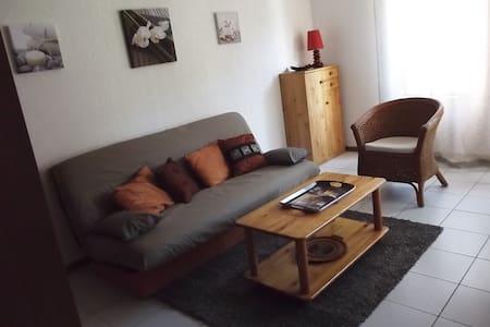 Appartement cosy entièrement rénové - Lägenhet
