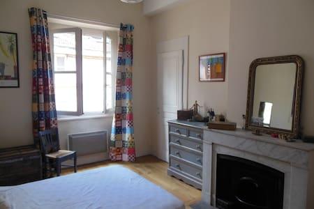 Appartement de caractère en plein centre de Lyon - Lyon - Appartement