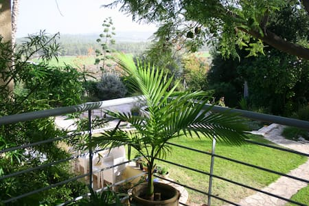 Country loft apartment - Kfar Uriya  - Loft
