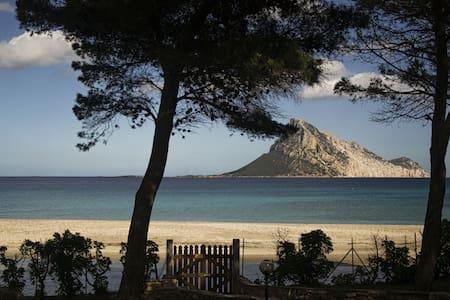 Villa Laguna accesso diretto al mare - Rumah
