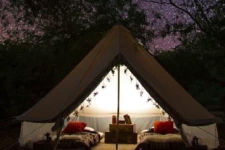 Starry Nights Luxury Camping - Nothern Noosa Beach - Noosa North Shore - Tenda