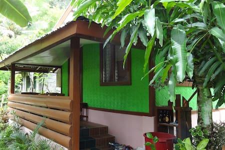 MANGOs Wild Homestay - San Vicente - Rumah