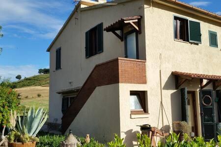 Podere dell'Omone trandy country estate - Campagnatico - House