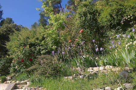Loft de 100m², rez avec terrasse dans la verdure. - Meyrargues - Loft