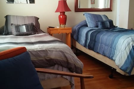 Downtown Twin Comfort for Business or Pleasure - Louisville - Apartment