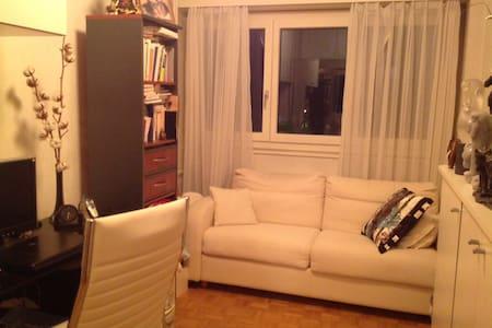 Room 1 pers big bed /desk/Wifi/park - Versoix