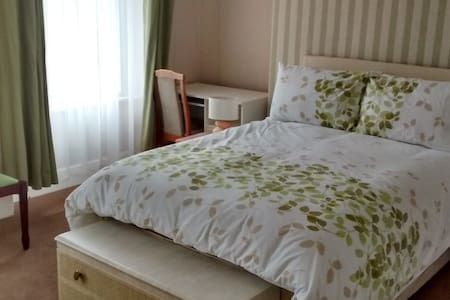 Large double room in lovely house - Plymouth - House