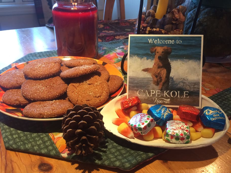 Home-baked goodies and two warm, friendly Golden Retrievers will greet you when you arrive.
