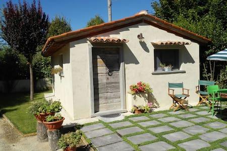 Casa dolce Matilda - Castiglion Fiorentino - House