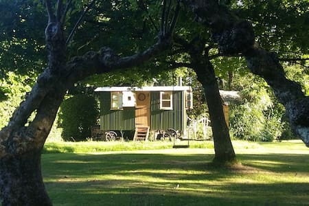 Maggie's Hut, new! Fittleworth - Cabana