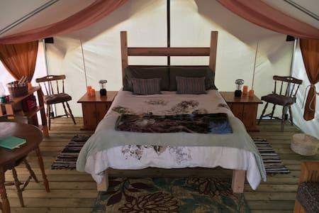 Rainforest Luxury Oceanfront Tent @ Mussel Beach - Tent
