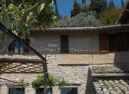 "Rooms ""tana del gatto"" - Assisi - House"