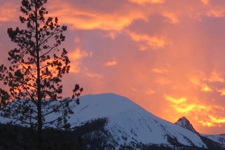 The Ptarmigans Nest BnB, Fox Den, No Cleaning Fee! - Silverthorne - Bed & Breakfast